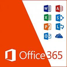 MicroSoft Office 365 비지니스 에센셜
