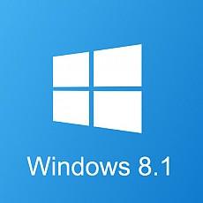 윈도우 8.1 PRO dsp